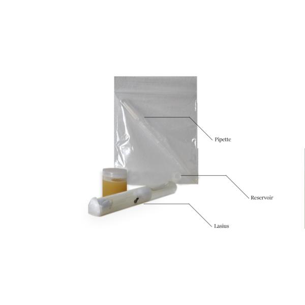 kit-pour fourmis